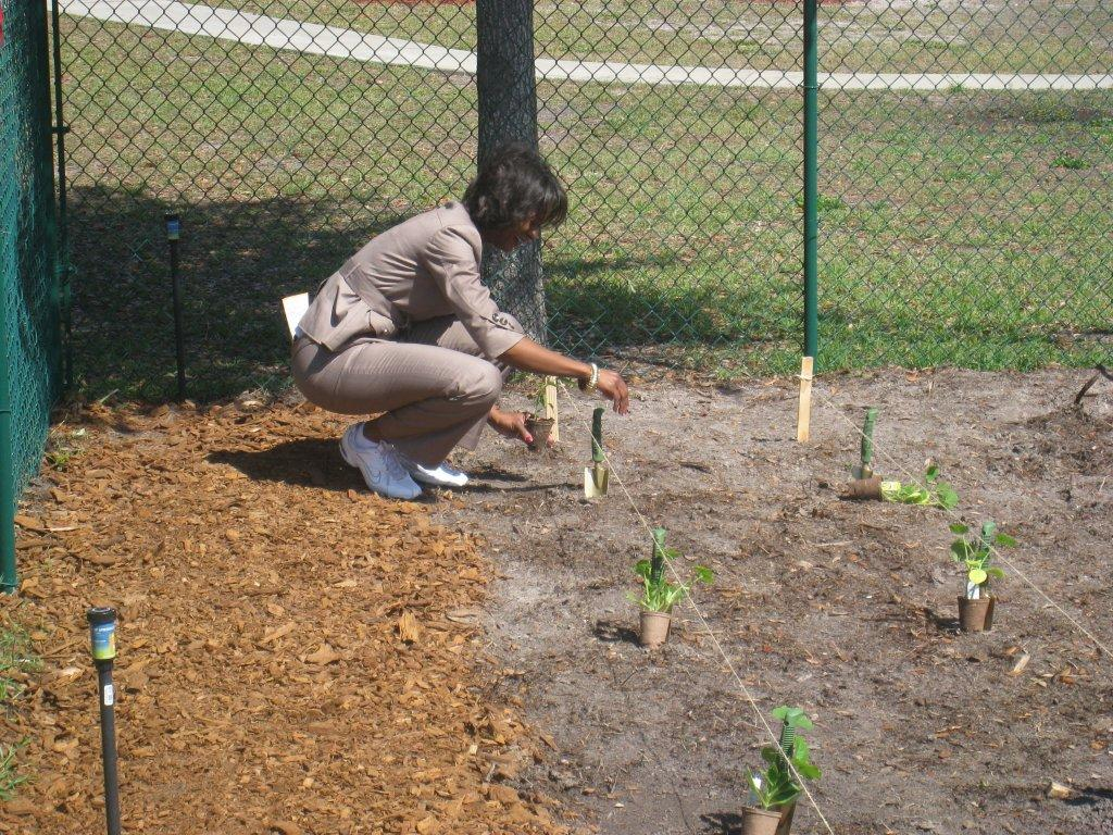 Comm_Rouson_planting_first_seed